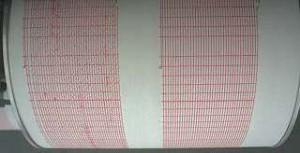 inregistrare cutremur