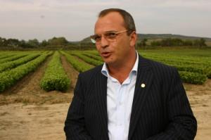 Claudiu Necsulescu, președintele companiei Jidvei