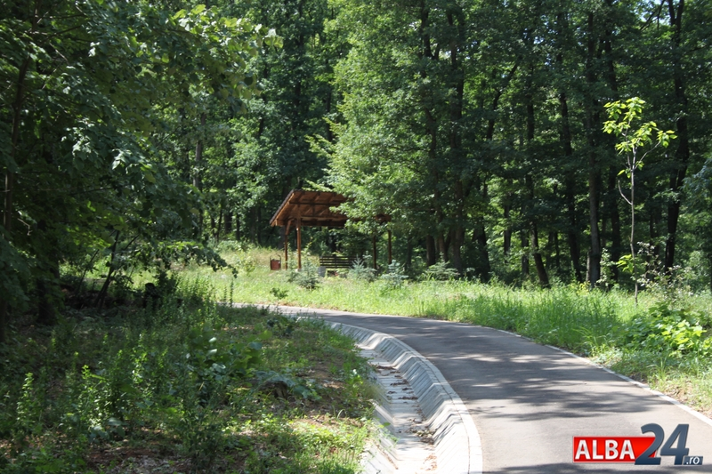 De La 1 Mai Se Deschide Parcul Dendrologic Dr Ioan Vlad Din