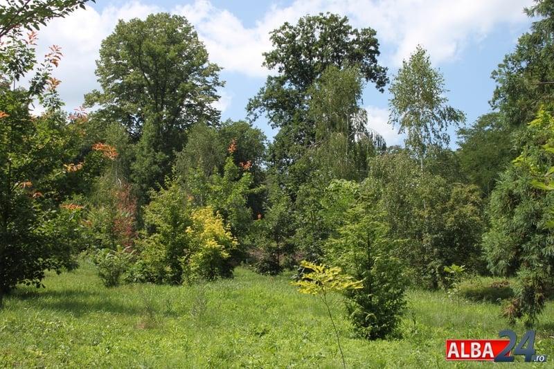 Parcul Dendrologic Din Alba Iulia Se Aplică Taxa De Acces