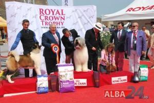 premii royal trophy 2015