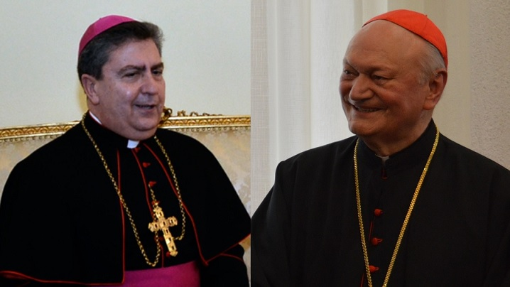 nuntiul-si-cardinalul-lucian