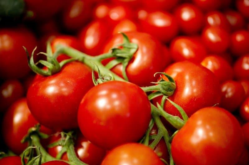 rosii tomate