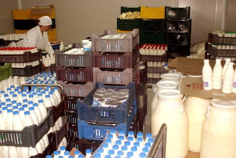 lapte lactate