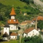 colectia muzeala manastirea ramet