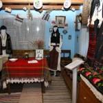 expozitia etnografica cetatea de balta