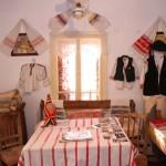 expozitia etnografica ocolis