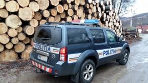 suv politia lemne