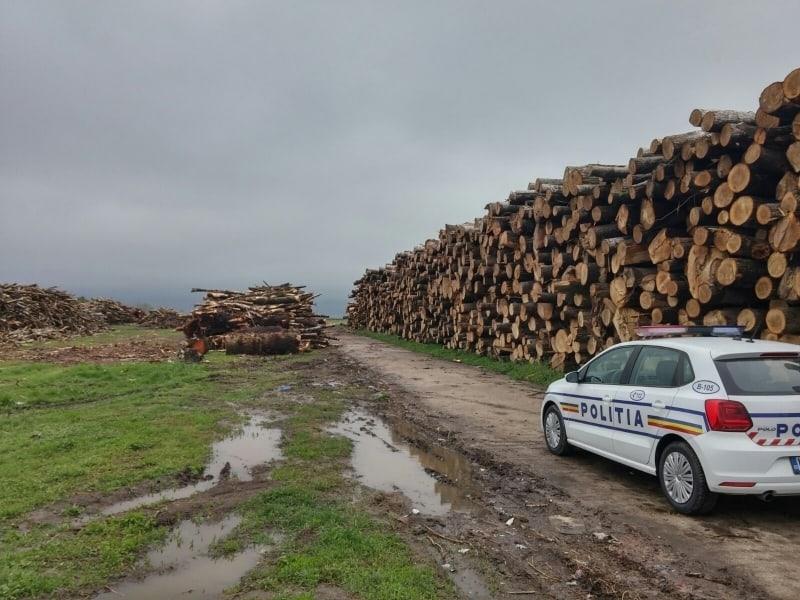 lemn politia