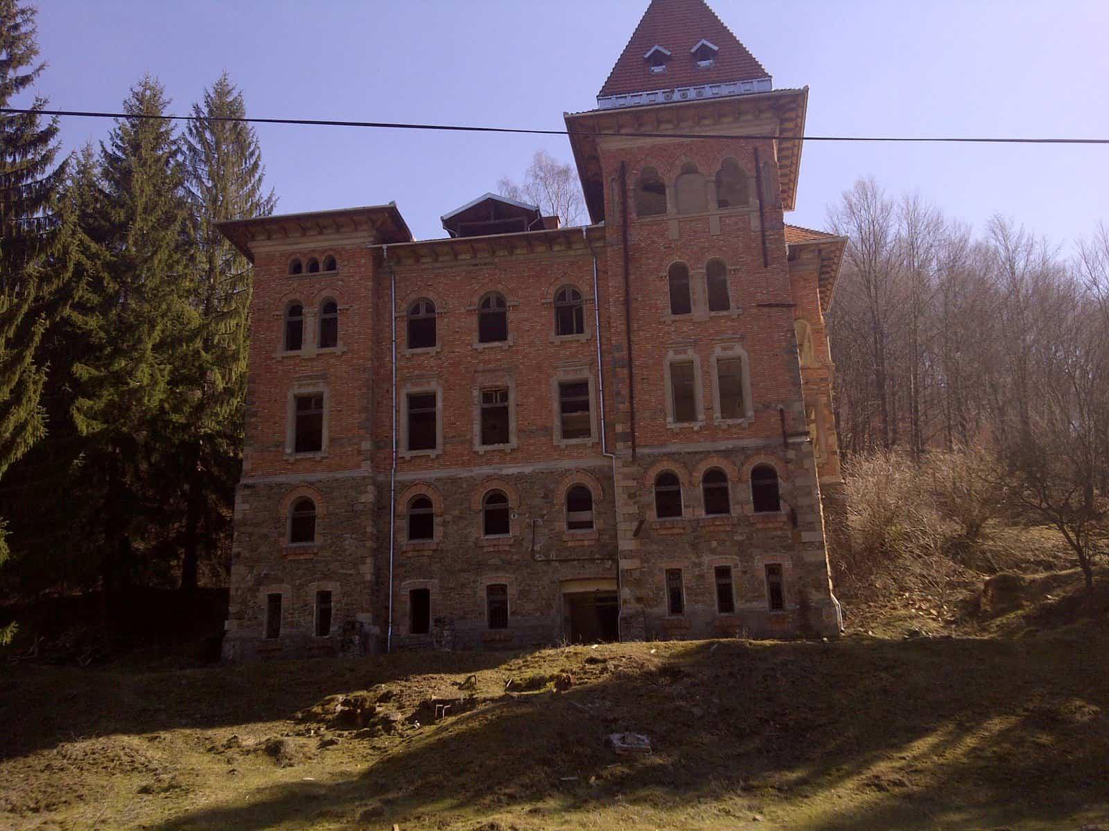 castel zlatna (10)