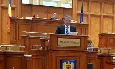 Dirzu parlament