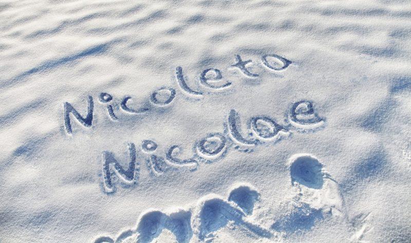 mesaje nicolae