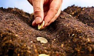subventii agricultura