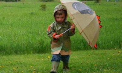 ploaie-umbrela