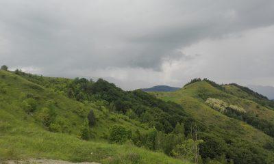 munte nori furtuna