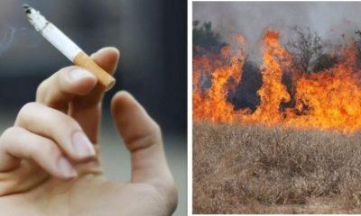 incendiu vegetatie tigara