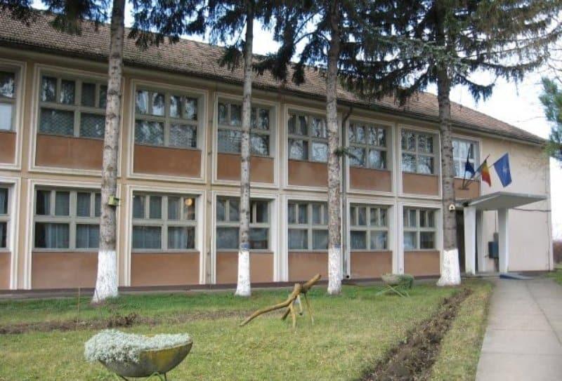liceul tehnologic alexandru borza ciumbrud