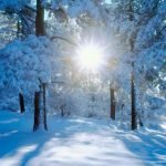 iarna, zapada