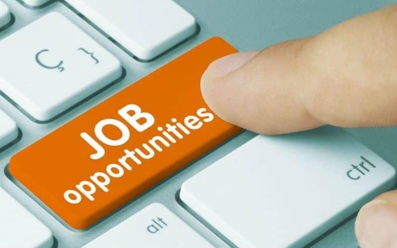 Job, locuri de munca