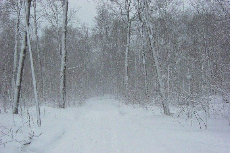 zapada viscol munte ninsoare