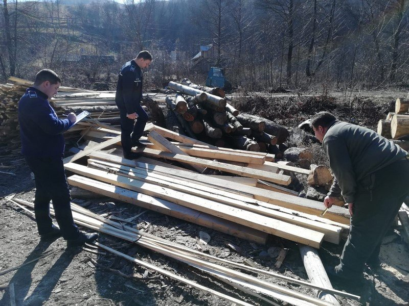 lemne control