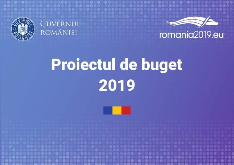 proiect buget