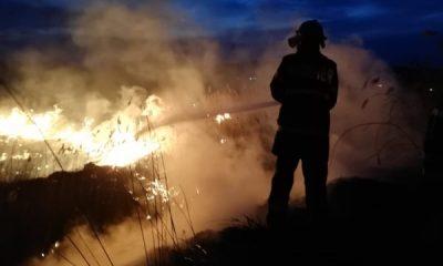 pompieri, incendiu, vegetatie, isu
