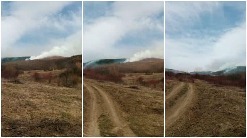 fum incendiu vegetatie