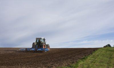 tractor ferma