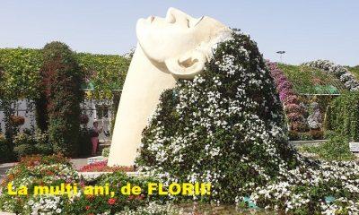 mesaje florii