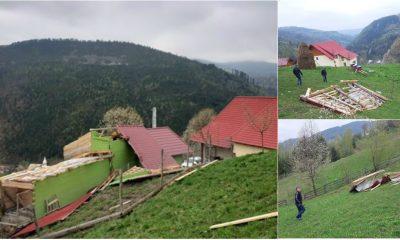 furtuna albac