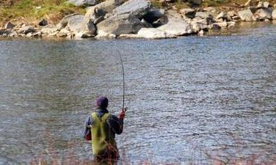 pescuit-undita-rau