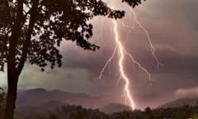 furtuna trasnet fulger