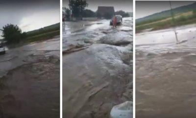 drum inundat bucerdea granoasa