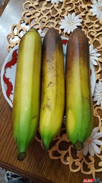 banane alba iulia
