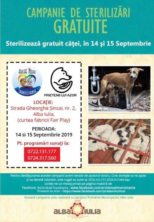 campanie sterilizare