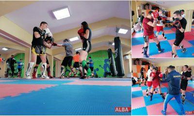 colaj kickbox